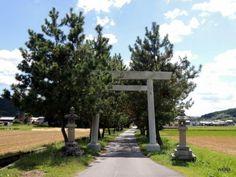 田圃の真ん中にある神戸神社の鳥居(伊賀市神戸)