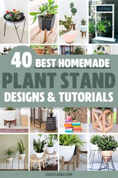 If you're looking for a simple way to organize and display all of your plants, then you need to check out these awesome indoor / outdoor DIY plant stand ideas and tutorials for inspiration! #plantstand #gardenideas #indoorplants #diy Wooden Plant Stands, Diy Plant Stand, Outdoor Plant Stands, Cheap Plants, Indoor Plant Pots, Indoor Outdoor, Organize, Tutorials, Simple