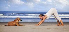 #yoga #pet #Beach #yogini #yogapose #Yogalove #Yogainspiration #yogaforall #animal #cute #Yogalife