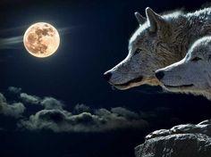 De uitwerking van de afgelopen volle maan en de maansverduistering van 28 september 2015
