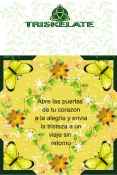 #amor #alegria