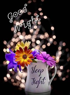 Good Morning Gif, Good Morning Greetings, Good Sleep, Good Night, Gallery, Beautiful, Good Night Messages, Be Nice, Night