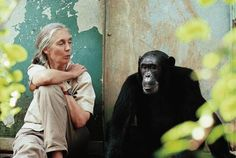 Excellent interview with Jane Goodall as she nears her 80th birthday >>> This woman is an inspiration!