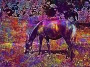 "New artwork for sale! - "" Lipizzaner Young Animal Horse Stud  by PixBreak Art "" - http://ift.tt/2tvbuiD"