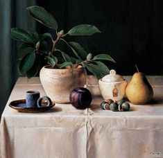 Image result for pot plant still life