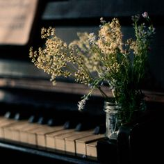 yellow flower in jar, piano Touches De Piano, Music Aesthetic, Nature Aesthetic, A Silent Voice, Piano Music, Still Life Photography, Belle Photo, Hetalia, Surrealism