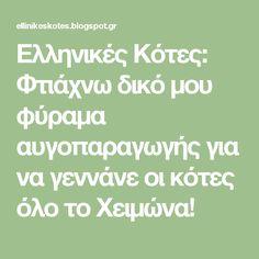 Ελληνικές Κότες: Φτιάχνω δικό μου φύραμα αυγοπαραγωγής για να γεννάνε οι κότες όλο το Χειμώνα! Blog, Blogging
