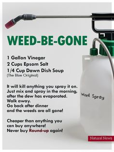 Saw this online and Im wondering if anyone has tried it? Im a true newbie in the yard and Im looking for natural weed killer recipes that work. Really want to avoid RoundUp! Garden Yard Ideas, Lawn And Garden, Garden Projects, Container Gardening, Gardening Tips, Organic Gardening, Vegetable Gardening, Gardening Gloves, Flower Gardening