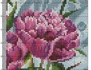 Wall Cross Stitch Flowers, Photo Wall, Plants, Flowers, Photograph, Planters, Plant, Planting, Planets