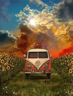 ☮ American Hippie ☮ VW Bus