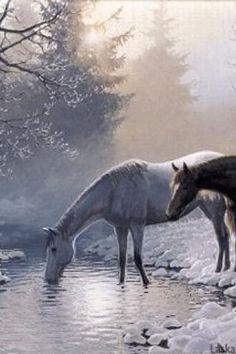 Google Image Result for http://cdn6.staztic.com/cdn/screenshot/horses-in-the-snow-live-wallpa-10-1.jpg