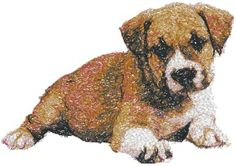 Advanced Embroidery Designs - Staffordshire Bull Terrier Puppy
