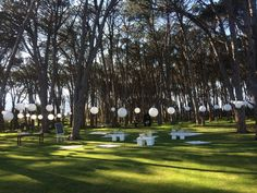 Picnic Wedding Setting @ Winery Road Forest with Chinese Laterns on lawn area