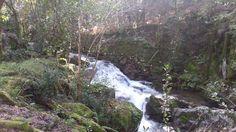Paisaje senda del río Troncoso Scenery, Fotografia