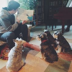 Read us a story? | A community of Schnauzer lovers!