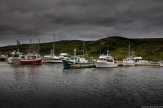 Fortune Harbour Newfoundland by Ben Stacey Newfoundland, Getting Old, Canada, The Incredibles, Culture, Island, Explore, Heart, Places