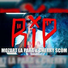 Hip Hop Rap, Hiphop, Dj, Cherry, Songs, Hip Hop, Cherries