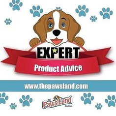 We care for you! customer support 24/7 and expert product advice your online pet boutique www.thepawsland.com #dogs  #freeshippingusa #animallovers #petsagram #petsrule #petlovers #dogs #dogsofinstagram #ilovemydog #instagramdogs #dogstagram #lovedogs #doglover #instadog #woof #petclothing #swag #bed #guardiangeaf #onlineshopping #boutique #adorable #personaltrainer #trainer #cool #buynow #sales #cats #catsofinstagram