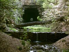 Old Tunnel Bat Cave, Fredricksburg TX