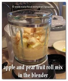 Fruit Roll-up mix of Apples and Pears in the blender! More info. at www.easy-food-dehydrating.com
