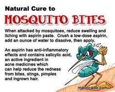 Natural mosquito bite remedy