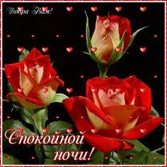 Mandala Art, Beautiful Roses, Good Night, Holiday Decor, Album, Coffee, Painting, Art, Have A Good Night