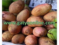 Manfaat buah kemang atau Mangifera kemanga biasanya untuk bahan rujak,buah yang memiliki bau yang kas dan berasa asam manis ini bisa juga dimakan langsung sebagai buah segar. Buah yang mulai langka di Indonesia ini sekarang dijadikan sebagai…