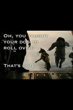 It amazes me what these dogs are capable of doing...god bless our soldiers and our four legged ones too!!!