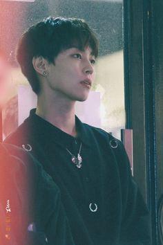 White Roses, Red Roses, Woo Sung, Rose Park, Kpop, Face, Jeonghan, Bts Jimin, Cinnamon