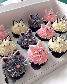 Cupcakes for Any Occasion Cat Cupcakes, Cupcake Cakes, Cupcakes For Girls, Cupcake Cake Designs, Butterfly Cupcakes, Kitten Party, Cat Party, Birthday Cake For Cat, Birthday Parties