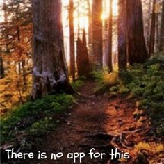 No app can replace the feel of the sun on your skin and the smell of wood loam under your feet.