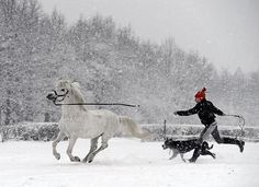 A young girl runs with her dog and a pony in the snow near Warsaw, Poland on February 7, 2013. (AFP/Getty Images) #snow #animals #play