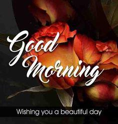 Love good morning pics Good Morning Wishes Love, Latest Good Morning, Good Morning Messages, Beautiful Morning, Beautiful Day, Morning Pics, Morning Pictures, Good Morning Images, Good Morning Quotes