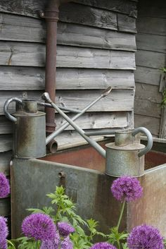 old water cans