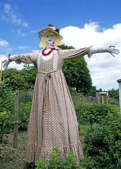 scarecrow people   ... Flowers Form & Foliage Gardens Growing to eat People and practical