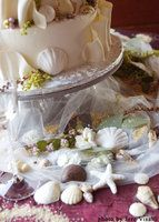 Wedding, Cake, Beach, Branching out cakes, Shell