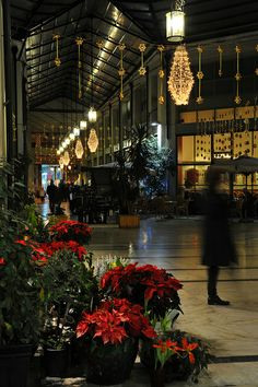 This is my Greece | Athens during Christmas