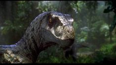Jurassic Park 3: Velociraptor, though in truth the dinosaur more closely resembles the Utah Raptor as velociraptor was closer in size to a dog Han a man.