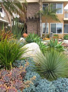 Seaside Colorful Succulent Garden - contemporary - Spaces - San Diego - debora carl landscape design