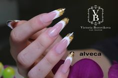 wonderful french with gold motives
