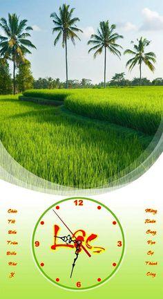 Tranh treo tường ngày Tết cánh đồng xanh