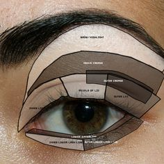 Eye Diagram, Parts of the Eye, Basic Eye Makeup