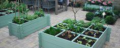 Kleine moestuin eigen-huis-en-tuin