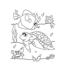 25 Best Ocean Coloring Pages For Your Little Ones