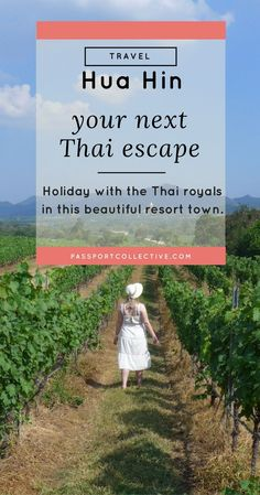 Passport Collective | Travel Guide Thailand | Asia Travel | Beach Holiday | Travel Tips: