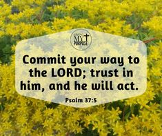 Psalm 37:5 Psalm 37, Praying To God, Let God, Trust God, Bible Verses, Purpose, About Me Blog, Lord, Sayings