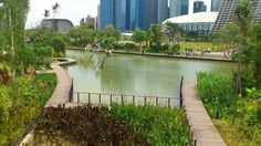 Garden by the bay pond