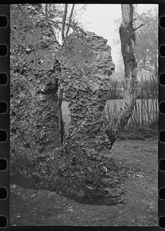 Tabby construction. Ruins of supposed Spanish mission, St. Marys, Georgia. Photo by Walker Evans