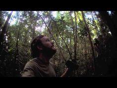 Video of the Day! @peter_houlihan @stri_panama @BRINCC @OuTrop #thisishowiFlyWire #rainforest #WearablesWeek #tech #jungle #wearables #photography #panama