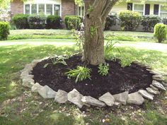 this was my mother's day project to my mom- put the stones and mulch around the crab apple tree #LandscapeAroundTrees